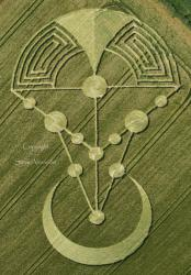 Crop debrancht cosmo tellur